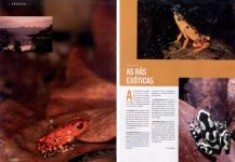 Luis Louro Photography - Digital Photographer Magazine 07-2005 - Article